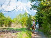 ツアーコースは自然豊かな林の中。馬と共にのんびりと、雄大な富士山を望むポイントまでトレッキングを楽しみます。