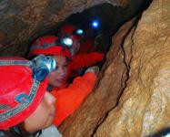 狭い洞窟内では、密着度が高く、ワキあいあい!