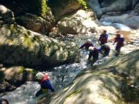 長良川の源流域で唯一手つかずの森を源流に持つ渓谷