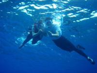 シュノーケリング体験もセットになっています。透き通る青い海で潜らずにいられますか???