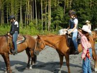 レッスンで馬を操ってみましょう