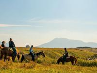 見渡すかぎりに広がる草原と、阿蘇五岳・九重連山を望む雄大な景色!360度広がる素晴らしいロケーションの中で楽しむ本格ホーストレッキング!