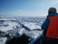 漁師歴30年以上、海を知り尽くした現地のベテラン船頭とガイドの案内で、流氷が作り出す絶景をお楽しみください!