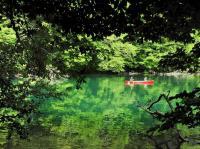 自然豊かな湖岸線を満喫しよう!