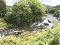 豊かな自然が残る空知川