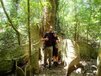 これぞ西表島!亜熱帯ならではの植物を楽しめる!
