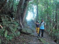 世界遺産「熊野古道」も歩ける!