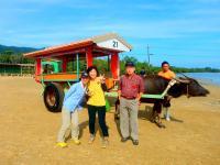 水牛車に揺られて由布島観光へ!