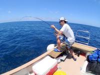 釣りとのコンボコースあり
