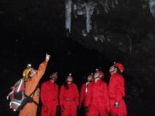 富士山麓 樹海&洞窟探検ツアー