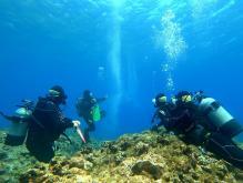 久米島 体験ダイビング
