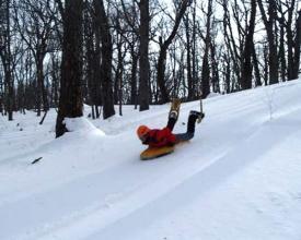 【大沼スノーシューツアー】注目度NO1ウインタースポーツ!雪面スレスレを滑るスピード感は迫力満点!