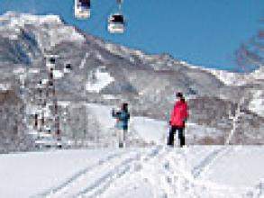 大雪の翌日はゲレンデ内でも新雪三昧。テレマークスキーの楽しさを感じられます。
