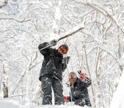 雪の降る日にはこんなにも綺麗な雪の結晶を見ることができます。当たり一面キラキラと輝いて本当に綺麗です。