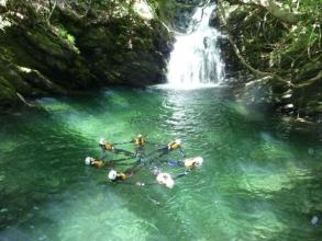 北遠州の天竜川の支流、自然豊かな渓谷でキャニオニング・シャワークライミング体験!