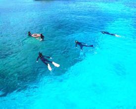 ケラマブルーと呼ばれる深い青色の海!世界に誇るバツグンの透明度!
