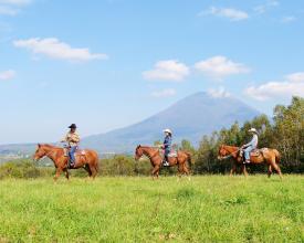 見晴らしの良い草原の丘。のんびり馬との時間を楽しんで♪