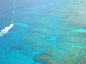 瀬底島のサンゴを上空から眺めてみよう!