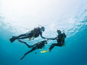 那覇から日帰り!人気の慶良間でボート体験ダイビング