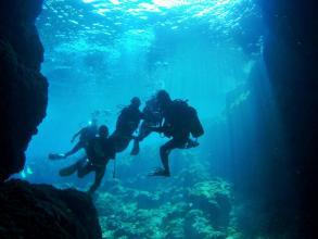 【人気No.1!専属ガイドがおもてなし!】 青の洞窟体験ダイビング ◆写真付!