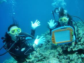 【アレンジ可能でカップルや記念日にもオススメ!】 青の洞窟体験ダイビング★VIPコース ◆写真付!