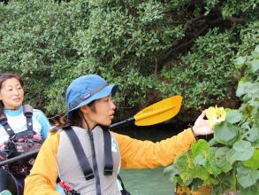 マングローブだけでなく、宮古島の自然や成り立ち・生きものたちを観察しながら楽しむエコツアーです!