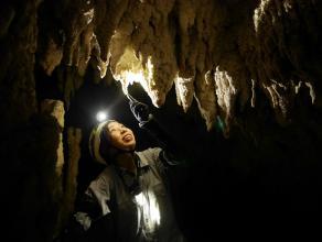 地下の巨大空間は神秘的な雰囲気