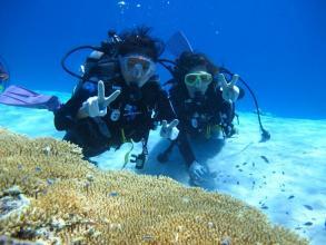 【透明度高い海へ潜ろう】体験ダイビング(ビーチエントリー)