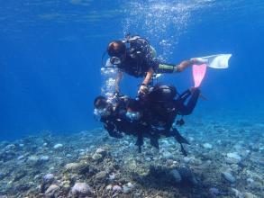 【彩り豊かな南国の海を満喫!】体験ダイビング(ボートエントリー)