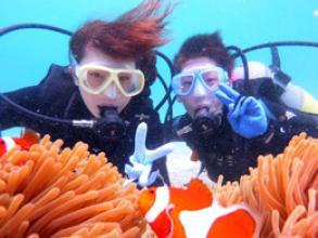 《自社託児所完備でパパ&ママも安心!貸切で楽しめる!》 お魚観察体験ダイビングコース ◆写真つき