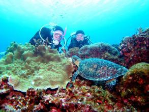 【貸切案内!深い青色・ケラマブルーを体感!】慶良間諸島 体験ダイビング ◆ランチ付き