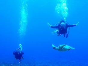 【久米島ブルーを360°全身で満喫できる!】久米島体験ダイビング◆写真つき