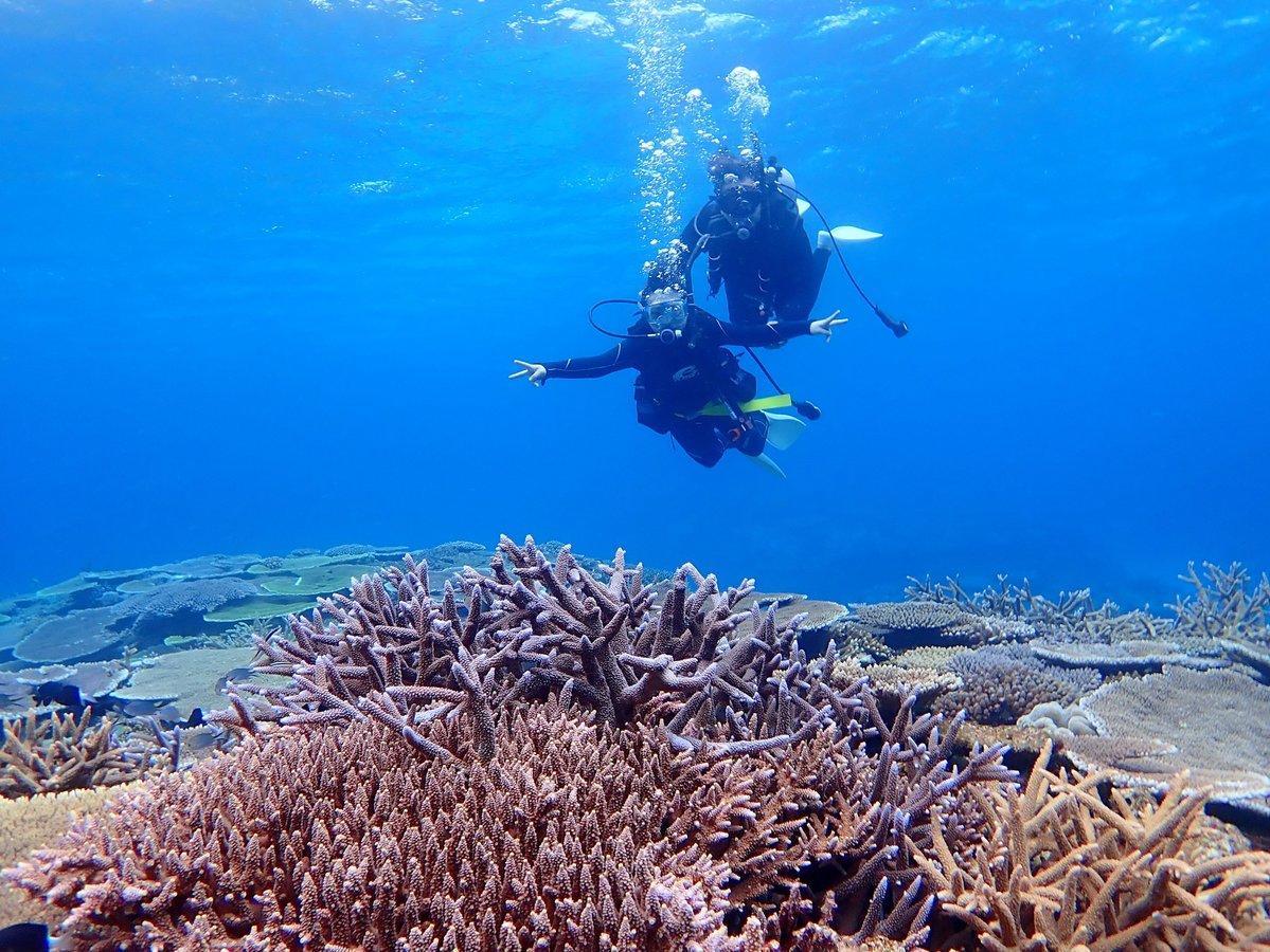 沖縄本島 (伊江島) 体験ダイビング