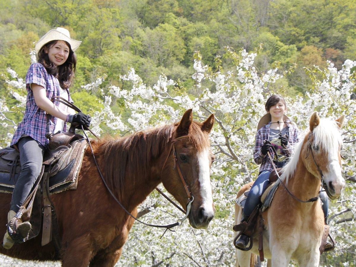 札幌(定山渓) ホーストレッキング(乗馬)