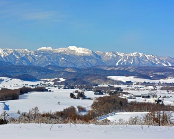 山の上から見渡す富良野の景色は最高です