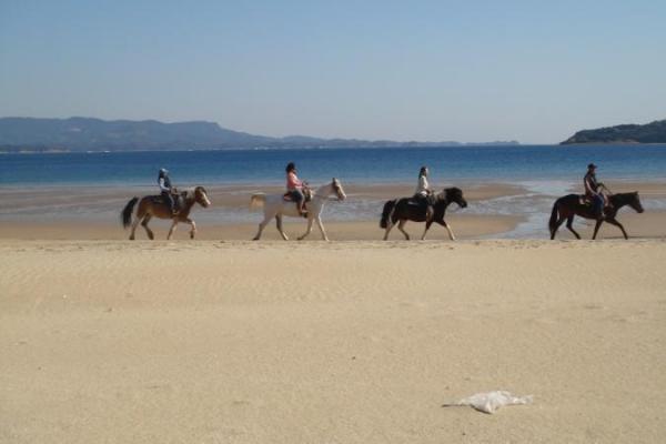 波打ち際を馬に乗りゆっくりと散策!映画のヒーロー・ヒロインになったかのような気分を味わえます。