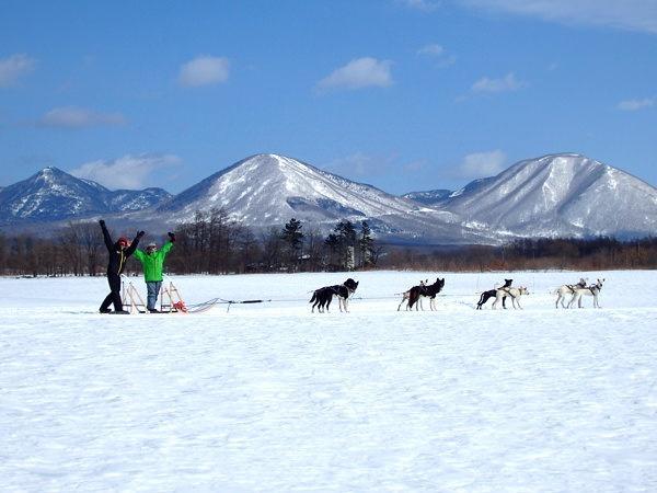 北海道・十勝 犬ぞり