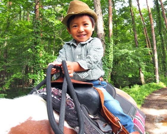 3歳から一人で乗馬トレッキングが可能!子供専用の鐙(あぶみ)もご用意しています。