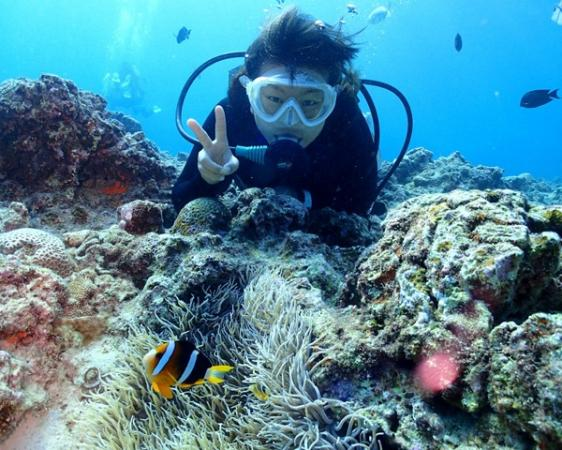 12歳以上なら【体験ダイビング】で「青の洞窟」を楽しむコースがおすすめ!