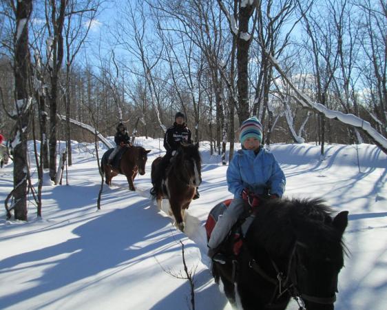 冬の凛とした空気に包まれた乗馬もオススメ!