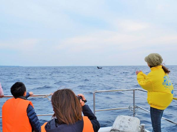 気さくで楽しいガイドがクジラの解説や豆知識をご紹介!移動中にも楽しんでいただけるよう、細やかな気配りも忘れません。