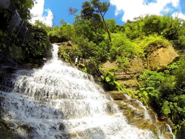美しい秘境の滝が見られるかも!?