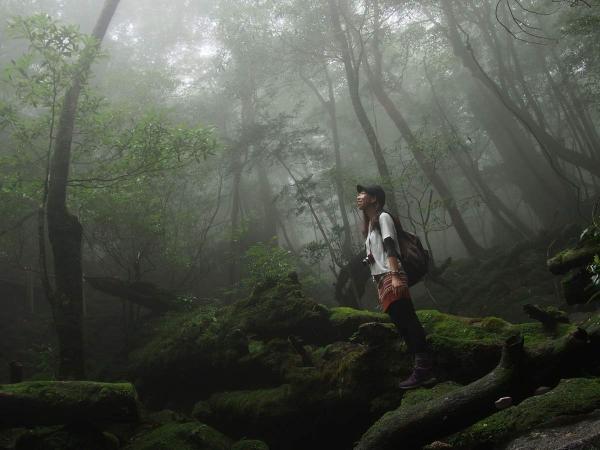 屋久島トレッキングツアー