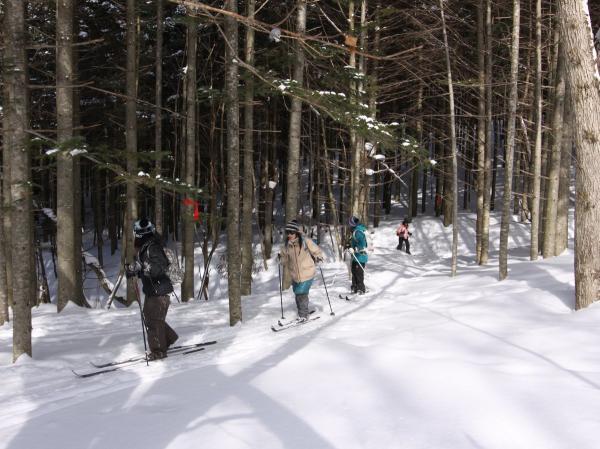 木漏れ日の中を歩くスキーで散策