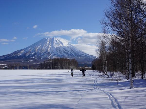 ニセコ スキーシューツアー