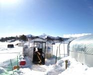 結氷後(1月中旬〜3月上旬ごろ)は冬の風物詩『氷上穴釣り』になります。釣り小屋/ドーム船があるから初心者も安心!