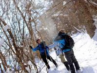 美しい樹林帯のスノーハイク!