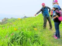 みちのく潮風トレイルの豊かな植生を楽しもう
