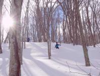 歩くスキーで森を遊びつくそう!