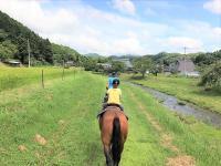 どこか懐かしい日本の原風景が残る町。